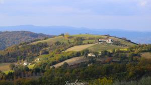 Tuscan Wonders
